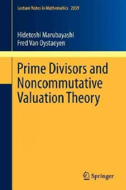 Prime Divisors and Noncommutative Valuation Theory (Paperback)