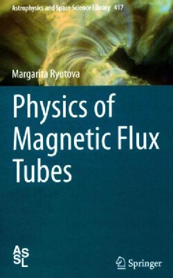 Physics of Magnetic Flux Tubes (Hardcover)
