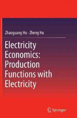 Electricity Economics: Production Functions With Electricity (Paperback)