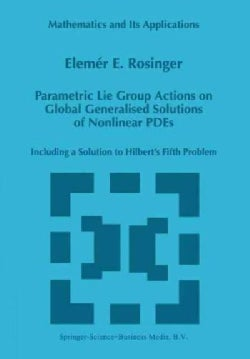 Parametric Lie Group Actions on Global Generalised Solutions of Nonlinear P. D. E.s: Including a Solution to Hilb... (Paperback)
