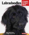 Labradoodles: Everything About Purchase, Care, Nutrition, Behavior, and Training (Paperback)