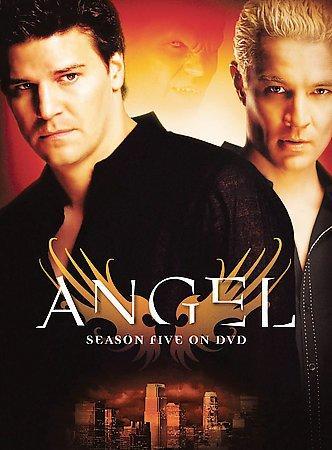 Angel: Season 5 (DVD)