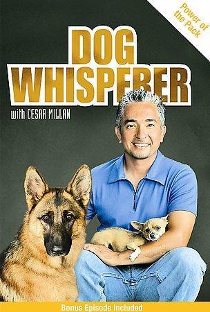 Dog Whisperer With Cesar Millan: Power Of The Pack (DVD)