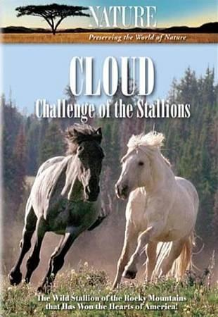 Nature: Cloud Challenge of The Stallions (DVD)