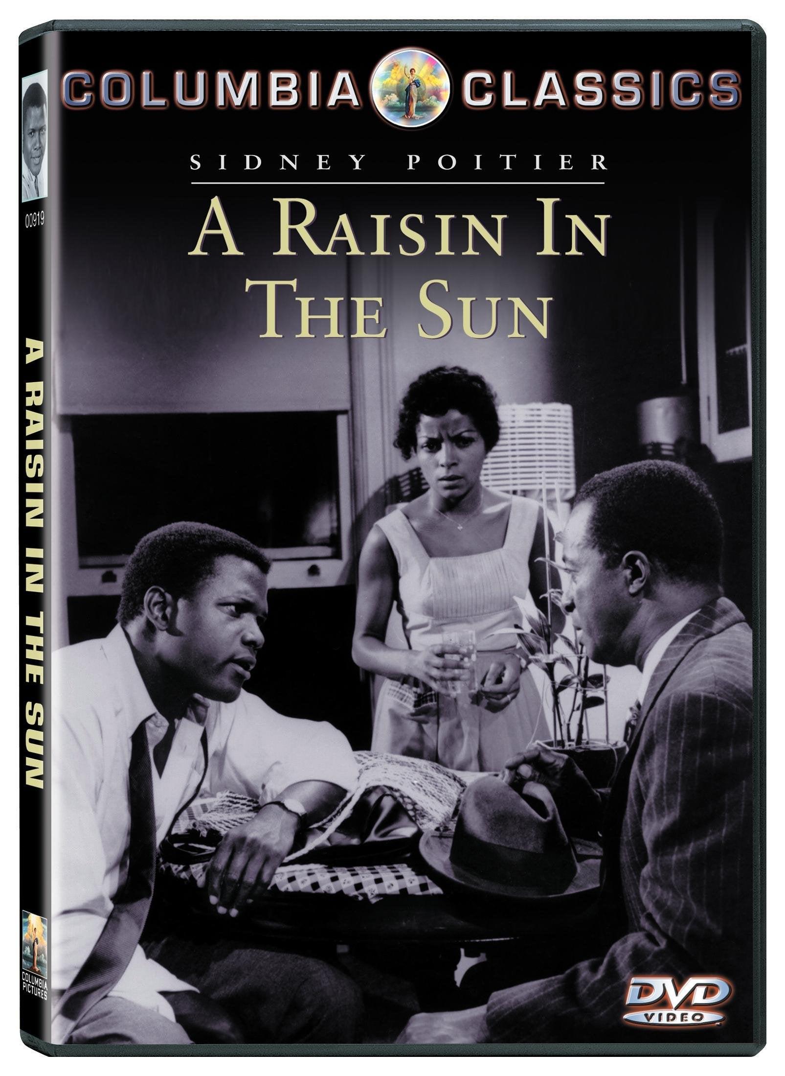 Raisin in the Sun (DVD)