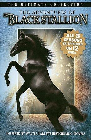 The Adventures Of The Black Stallion (DVD)