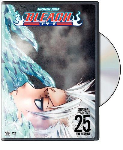 Bleach, Vol. 25 (DVD)
