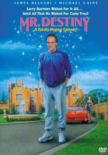Mr. Destiny (DVD)
