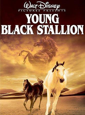 The Young Black Stallion (DVD)