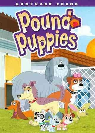 Pound Puppies: Homeward Pound (DVD)