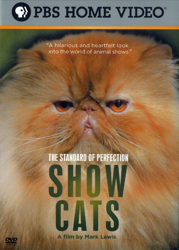 The Standard Of Perfection - Show Cats - Closed Caption; Widescreen (DVD)