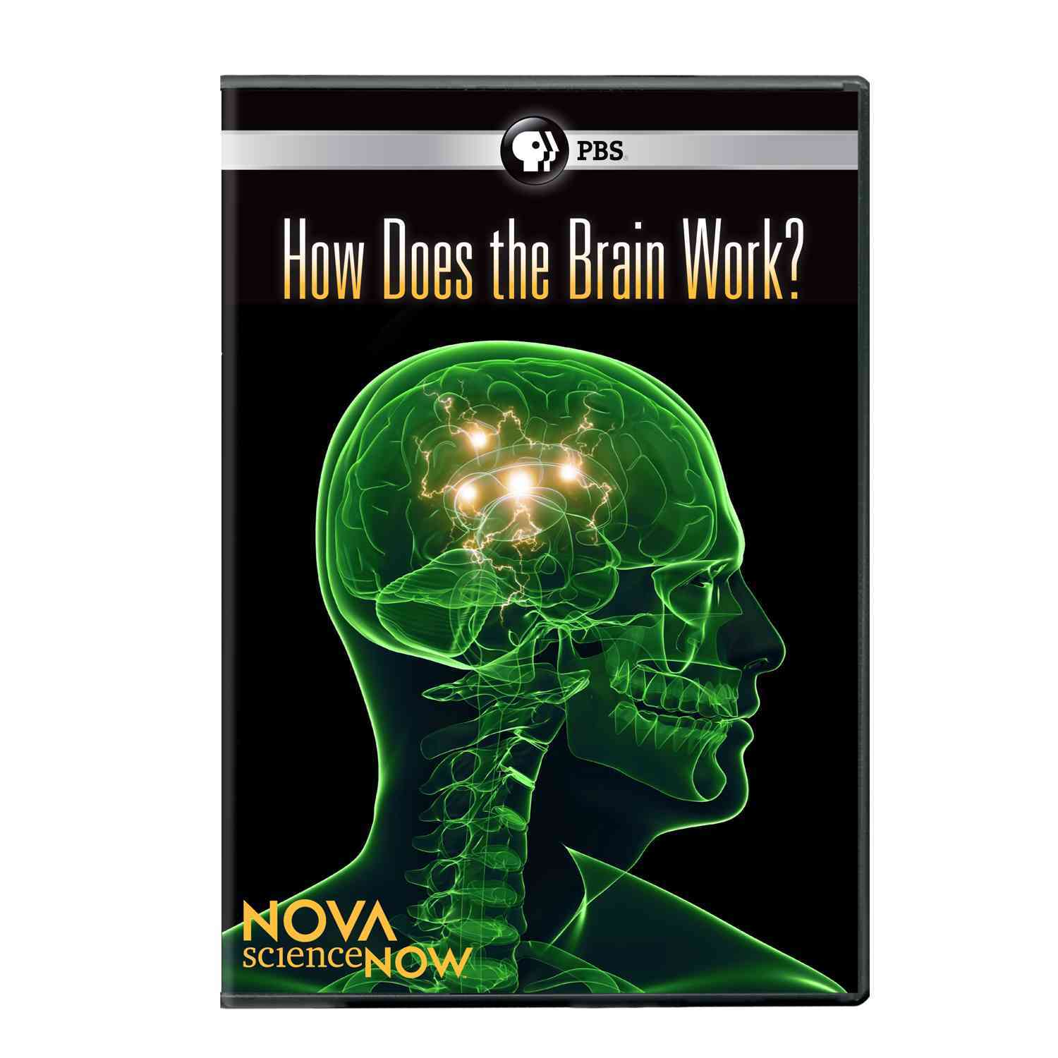 Nova: ScienceNOW: How Does The Brain Work? (DVD)