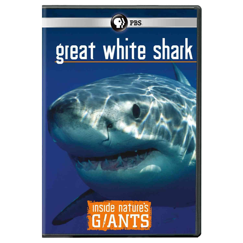Inside Nature's Giants: Great White Shark (DVD)