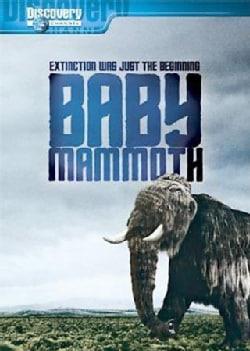 Baby Mammoth: Raising The Mammoth (DVD)