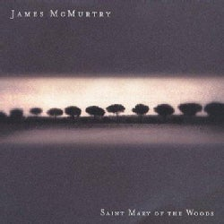 James McMurtry - Saint Mary of the Wood