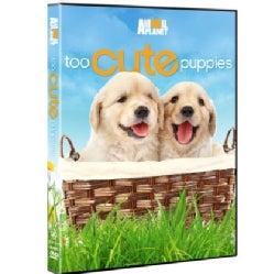 Too Cute Puppies (DVD)