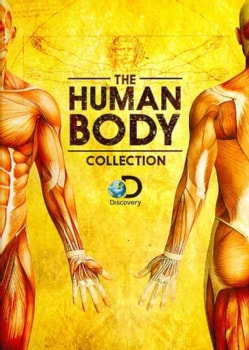 The Human Body Collection (DVD)