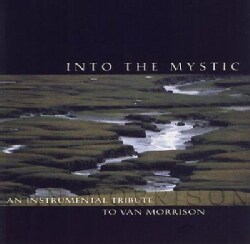 Various - Into the Mystic:Instrumental Tribute
