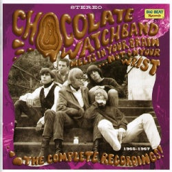 Chocolate Watch Band - Melts In Your Brain Not On Your Wrist