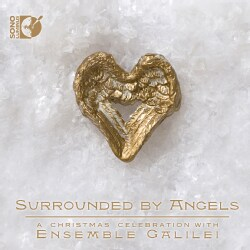 Various - Surrounded by Angels