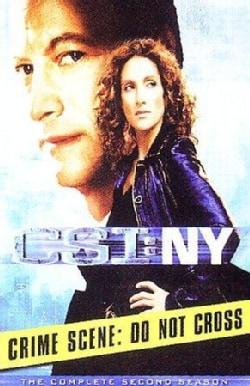 CSI: NY: The Complete Second Season (DVD)