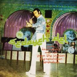 Various - Sedayeh Del