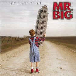 MR.BIG - ACTUAL SIZE