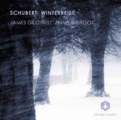 Franz Schubert - Schubert: Winterreise