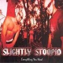 Slightly Stoopid - Everything You Need
