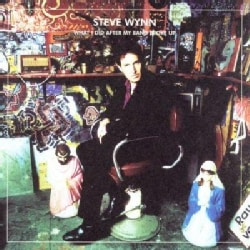 Steve Wynn - What I Did After My Band Broke Up: The Best of Steve Wynn 1990-2004