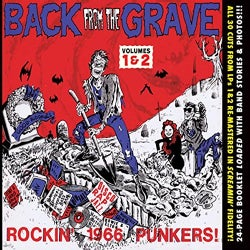 Various - Back from the Grave: Vols. 1 & 2