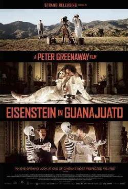 Eisenstein in Guanajuato (DVD)