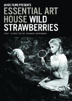 Wild Strawberries- Essential Art House (DVD)
