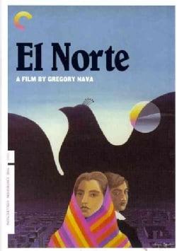 El Norte (DVD)
