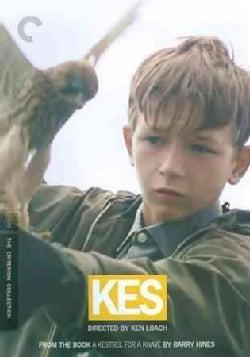 Kes (DVD)