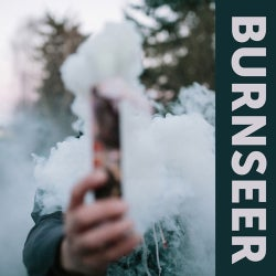 Burnseer - Burnseer