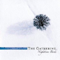 Gathering - Nighttime Birds