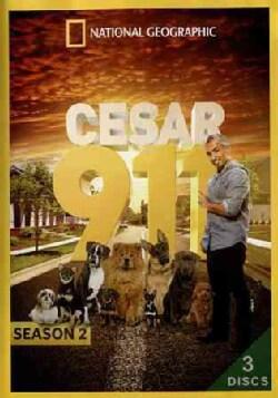Cesar 911: Season 2 (DVD)