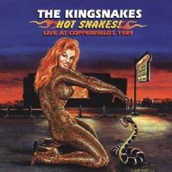 Kingsnakes - Hot Snakes!