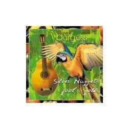 David Burgess - Silver Nuggets & Fools Gold