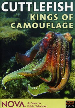 Cuttlefish - Kings of Camouflage (DVD)