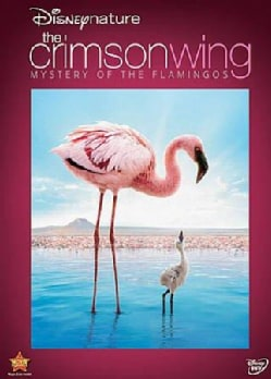 Disneynature: Crimson Wing The Mystery Of The Flamingo (DVD)