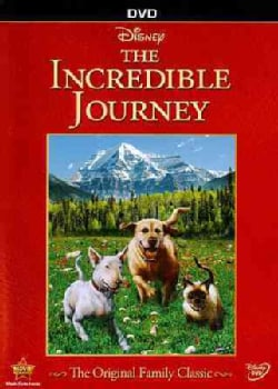 The Incredible Journey (DVD)