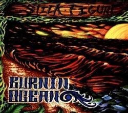 Stick Figure - Burnin' Ocean