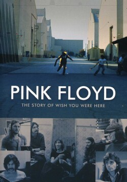 Story Of Wish You Were Here (DVD)