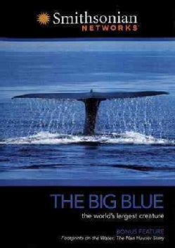 Smithsonian Channel: Big Blue (DVD)