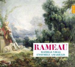 Amarillis - Rameau
