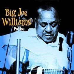 Big Joe Williams - Po Jo