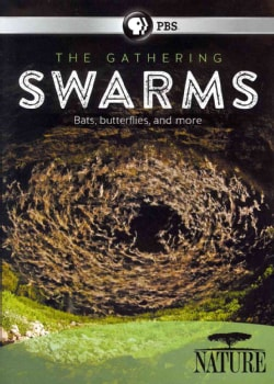 Nature: The Gathering of Swarms (DVD)