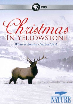 Nature: Christmas in Yellowstone (DVD)
